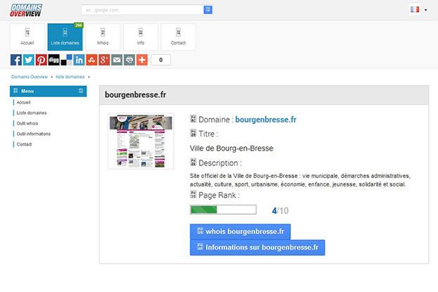 Capture d'écran de Domains Overview montrant un snapshot et une balise de description d'un nom de domaine
