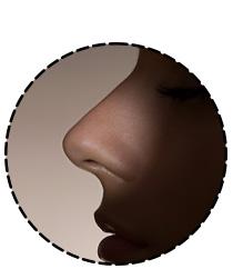 Un bon nez est souvent plus utilisé qu'une étude de marché
