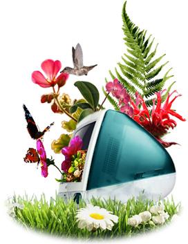 photo d'un mac, l'ordinateur de prédilection pour le graphisme