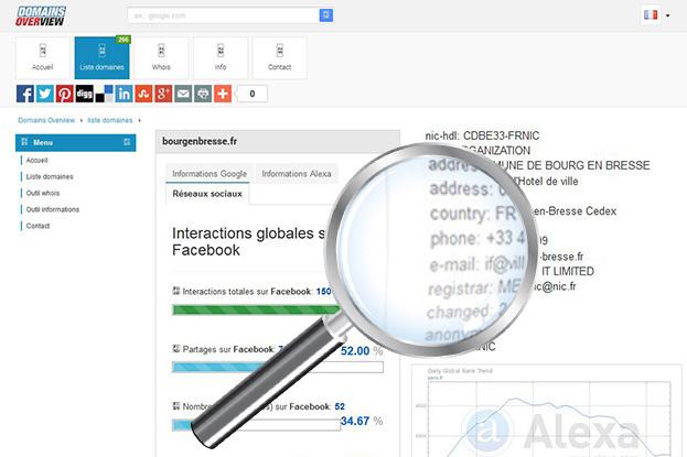 Image illustrant les informations recueillis sur un nom de domaine, e-mail, pays, registre, adresse etc.